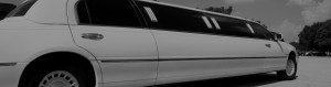 limo_main_header